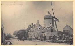 Windmolen Molen Windmill  Moulin à Vent  Molendijk Oud-Vossemeer      L 523 - Mulini A Vento