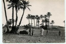 Tozeur, Dans La Palmeraie, Campement (scan Recto-verso) KEVREN0036 - Túnez