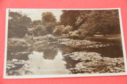 Ireland Dublin Lily Pond Gardens 1953 - Other