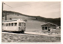 TMB Mont Blanc  Trein Train Tren Zug   Photo   Foto 12;5x8.50cm - Railway