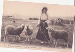 CPA - 71. Bréhatine Gardant Ses Moutons Aux Prés-salés - Ile De Bréhat