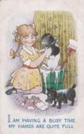 AL70  Comic/humour - Girl Whitewashing Her Cat And Dog - Humour