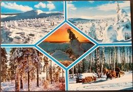Ak Finnland - Winter - Kutsche - Landschaften - Finnland