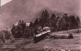 Les Marécottes VS, Pension Du Parc Et Chemin De Fer Et Train (12.8.35) - VS Wallis