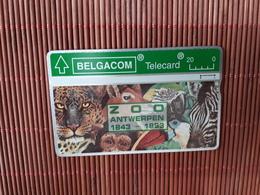 S 64 Zoo Antwerp Special Number 315 G Used Rare - Belgique