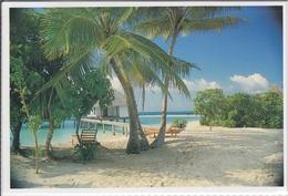 MALDIVES - Dream-like Reality, Gangehi Tourist Resort,  Nice Stamp - Maldiven
