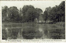 WEZEMBEEK-OPPEM-PËCHERIE - Wezembeek-Oppem