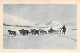 USA Etats-Unis ( AK Alaska ) Wagons Lits De L'Articque / Wagons Beds Of The Arctic - CPA - - Etats-Unis