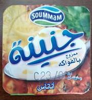 "Opercule Cover Yaourt Yogurt "" J'NINA ""  D'Algérie Ananas Yoghurt Yoghourt Yahourt Yogourt - Coperchietti Di Panna Per Caffè"