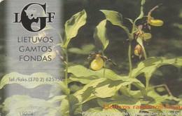 LITUANIA. CHIP. Orchid Cypripedium Calceolus. LT-LTV-C025. (007). - Flores