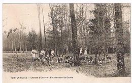 77 -  Fontenailles - Chasse à Courre Avant La Curée (forêt,chasseurs Et Meutes De Chiens)              (459 - Jacht