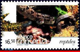 Ref. MX-2422 MEXICO 2005 ANIMALS, FAUNA, CONSERVATION, REPTILES,, SNAKES, ALLIGATOR, TURTLE, (6.50P), MNH 1V Sc# 2422 - Mexiko