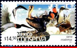 Ref. MX-2434 MEXICO 2005 BIRDS, CONSERVATION, COASTAL, BIRDS, (14.50P), MNH 1V Sc# 2434 - Messico