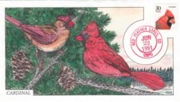 Sc#2480 Cardinal 30-cent Issue Bird Theme, 1991 FDC Collins Illustrated First Day Cover - First Day Covers (FDCs)