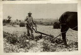 AFRICA AFRIQUE 18*13CM Fonds Victor FORBIN 1864-1947 - Africa