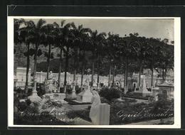 AK Guayaquil, Blick Auf Den Friedhof - Ecuador