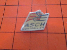 516A PIN'S PINS / Rare Et De Belle Qualité ! / Thème : ASSOCIATIONS / ASCH HOPITAL MONTPELLIER - Associations