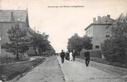 Steenweg Van Heide - Kalmthout - Kalmthout