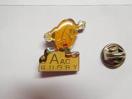 Beau Pin's , Rugby , AAC , Amsterdamse Atletiek Club Rugby , Pays Bas - Rugby