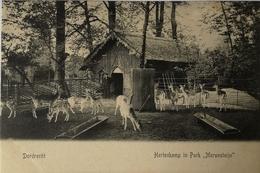 Dordrecht // Park Merwesteyn (Hertenkamp) 19?? - Dordrecht