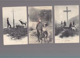 Chevres En Suisse / Lot De 4 CP éditeur J.J. + 1 CP Savoie Chatel  / Champery, En Gardant Le Troupeau, - Animals