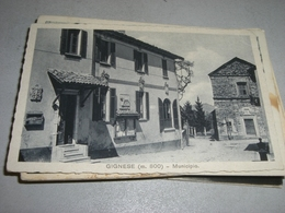 CARTOLINA GIGNESE - Verbania