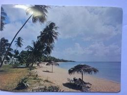 TRINIDAD AND TOBAGO - Turtle Beach Hotel - Tobago West - 1975 - Trinidad