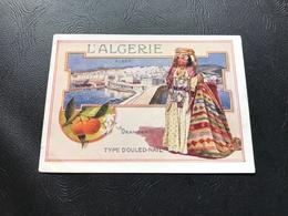 L'ALGERIE - ALGER - Oranger - TYPE D'OULED NAIL - Chromo «Bon Point» - Other