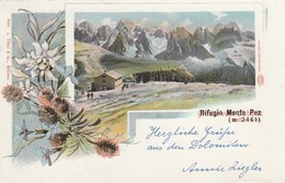 Trentino - Bolzano - Rifugio Monte Pez -- Bella Tipo Gruss - Other Cities