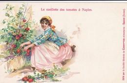 SUISSE - SAXON Carte Publicitaire Edité Par Société De Conserves Alimentaires ITALIE La Cueilleuse Des Tomates à Naples. - VS Valais