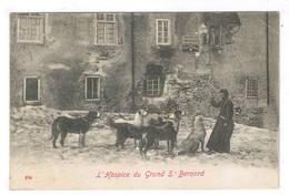 L HOSPICE DU GRAND SAINT BERNARD - VS Wallis