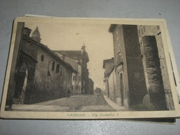 CARTOLINA CASSINE-VIA UMBERTO I - Alessandria