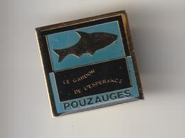 Pin's -- POUZAUGES -- Le Gardon De L'Espérance ( Dép 85 ) Association De Pêche - Poisson - Associations