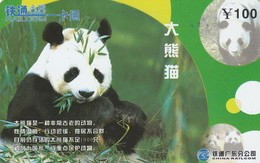 TARJETA TELEFONICA DE CHINA. FAUNA. OSO PANDA - PANDA BEAR. CRCYB2003(10-3). (0768). - Tarjetas Telefónicas