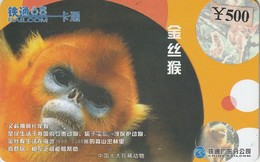 CHINA. FAUNA. Rhinopithecus. CRCYB2003(10-1). (0769). - Tarjetas Telefónicas