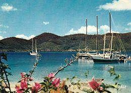 1 AK Martinique * LES BOUCANIERS Club Méditerranée - IRIS Karte Nummer 7968 * - Sonstige