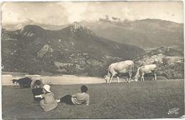W4246 Paesaggio Paysage Landscape - Vacca, Mucca, Cow, Koe, Vache, Vaca / Viaggiata 1943 - Mucche