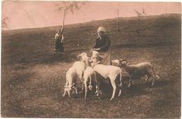 W4250 Chèvre Ziege Goat Capra / Viaggiata 1931 - Altri
