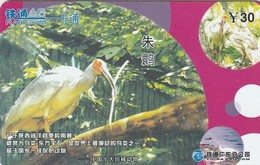 CHINA. FAUNA. Nipponia Nippon. CRCYB2003(10-6). (0763). - Pájaros