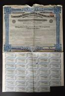 COMPAGNIE BRESILIENNE DE CHEMINS DE FER * 1912 * BRASIL * COMPANHIA FERROVIARIA BRAZILEIRA * SCANS - Chemin De Fer & Tramway