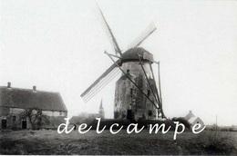 HALLAAR - Heist-op-den-Berg (Antwerpen) - Molen/moulin - Zeldzame Opname Van De Verdwenen, Unieke Berthoutmolen - Heist-op-den-Berg