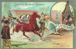Verona, Grande Fiera Di Cavalli, Riproduzione C08, Reproduction - Fiere