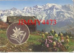 """CPM - CARTE PARFUMEE DE LUXE - """" VALLAZUR """" GRASSE 06 Alpes Maritimes - Parfum NEIGEFLOR De FRAGONARD - Brev S. G. D. G. - Grasse"""