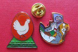 Pin's,Animaux,Oiseaux,COQ,POULE,CHIEN,LAPIN,CHAT - Animaux