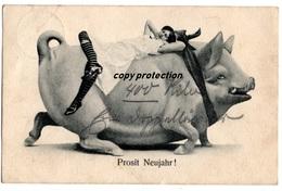 Prosit Neujahr, Frau Auf Glücks-Schwein, Alte Postkarte 1903 - Neujahr