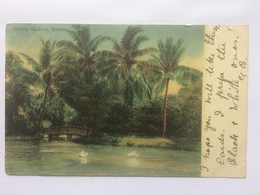 INDIA - Victoria Gardens Bombay - 1904 - Inde