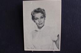 Sp-Actrice / Marilyn Pauline Novak, Dite Kim Novak, Née Le 13 Février 1933 à Chicago, Dans L'Illinois.( Forma 13x18 Cm ) - Artistes