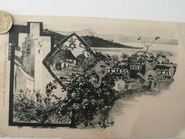 Gruss Aus Horn Am Untersee, Gasthaus Hirsch, 1900 - TG Thurgovie