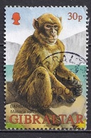 Gibraltar 2002 - Wildlife Of Gibraltar - Gibraltar
