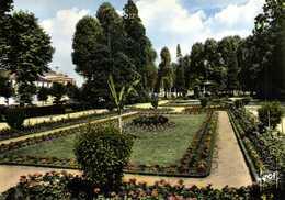 CPSM Grand Format MONTARGIS (Loiret) Les Jardins Du Patis Colorisée  RV Edit Yvon - Montargis